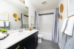 altius virginia bathroom with high end finishes and modern decor